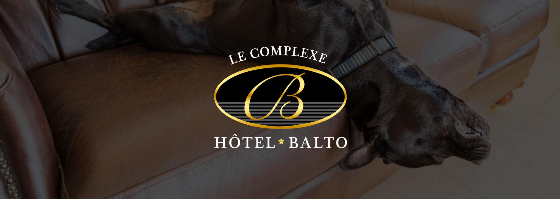 Hotel-Balto pension pour animaux